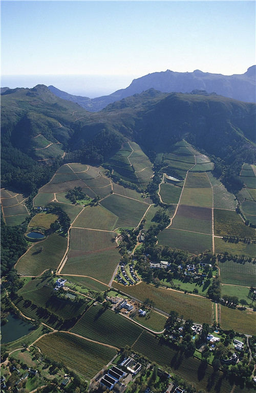 /Aerial view of Klein Constantia